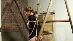 Bodacious beauty Eleonore gets tied up and suspended by a masked man