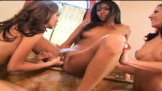 Lezzie threesome with these lovely babes fingering and toying both holes