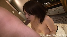 Housewife Nozomi Hara gives him a blowjob and gets a messy facial