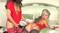 Dirty milf Cornelia prepares a fine rubber dick and bangs Sheila