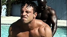 Hunky white dude has two muscled black studs fucking his ass in the pool