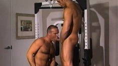 After lifting weights, these two jocks decide to work each other out