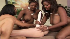 Ghetto lesbian hussies make each other scream in pure pleasure